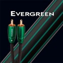 AUDIOQUEST EVERGREEN CABLE MODULATION RCA