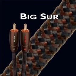AUDIOQUEST BIG SUR CABLE MODULATION RCA