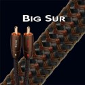 AUDIOQUEST BIG SUR CABLE MODULATION RCA 1M