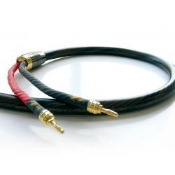 REAL CABLE HD TDC600 - Gamme MASTER  2X3 METRES