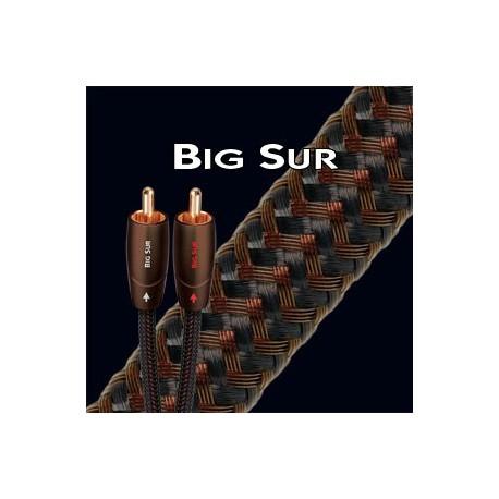 AUDIOQUEST BIG SUR CABLE MODULATION RCA 1M